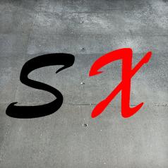 Selbstexperiment.de Logo und Favicon