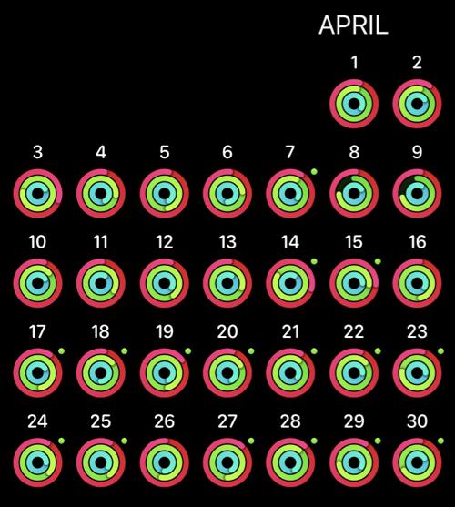 Selbstexperiment Aktivität April 2017